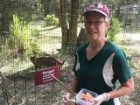 Volunteer's shoulder 'nearly torn off' by tiger at Carole Baskin's Big Cat Rescue