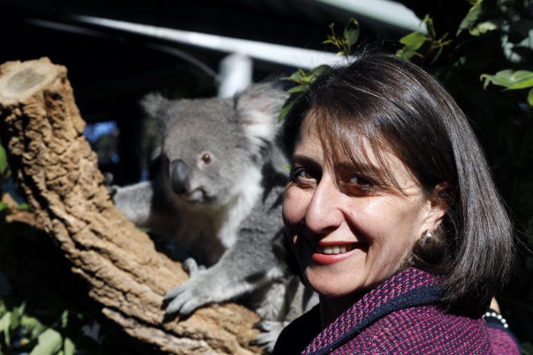 Clown of the Week: NSW Premier Gladys Berejiklian