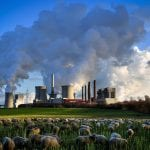 The case for carbon offsets to reach net zero emissions